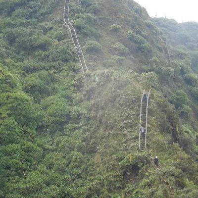 Mgahinga Volcano hike-Best hiking safaris in Uganda