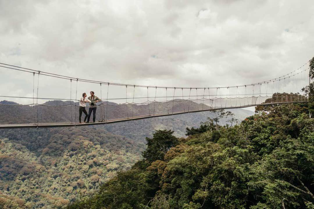 Nyungwe National Park Rwanda - Canopy Walk