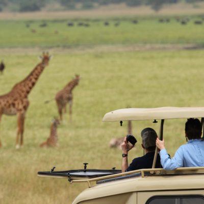 Game Drive in Akagera National Park Rwanda