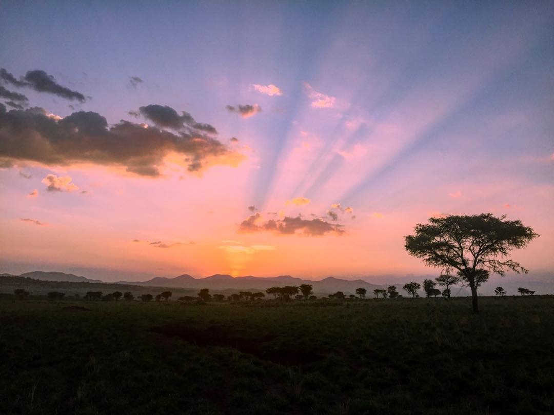 Kidepo Valley National Park Magnificent ringed Plains