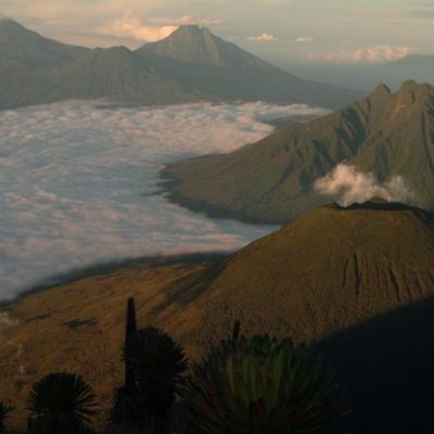 Virunga mountains in Volcanoes National Park