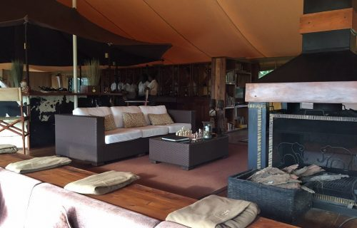a-section-of-the-main of Serengeti Bushtops Camp