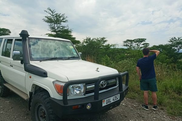 Car rental with a driver guide in Uganda