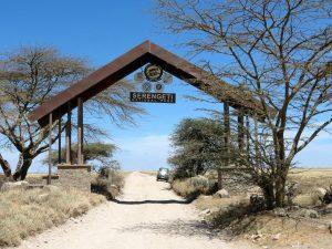 Seronera - Serengeti