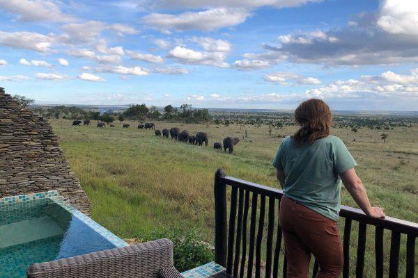 Luxury Four Seasons Safari Lodge Serengeti