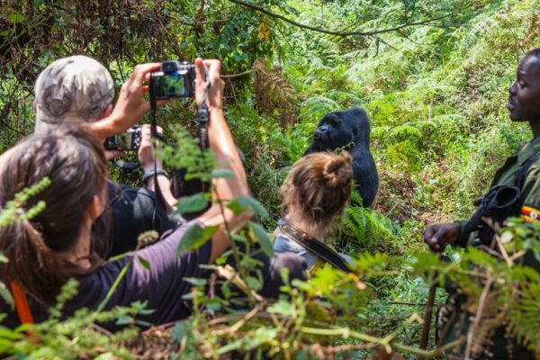 Uganda Adventure Safari Safety 2022